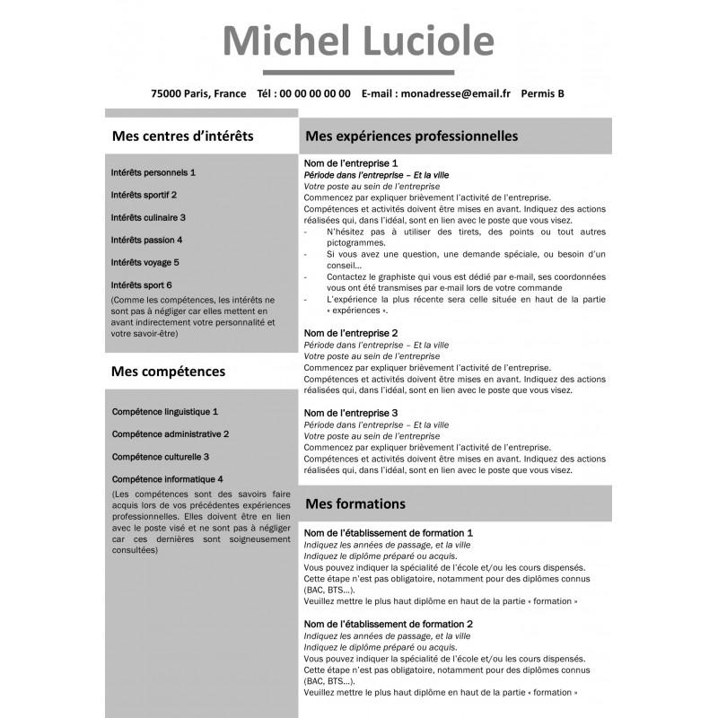 Modèle CV avec des blocs gris gratuit à télécharger et à personnaliser
